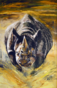Rhino-Yellow-lores